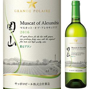 【6本〜送料無料】岡山マスカット オブ アレキサンドリア〈薫ルブラン〉 2019 グランポレール 750ml [白]Okayama Muscat Of Alexandoria Aromatic Blanc Grande Polaire