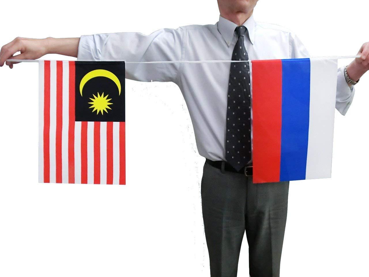 テトロン製・万国連続旗20カ国・15m[S判・25×37.5cm]あす楽対応・安心の日本製