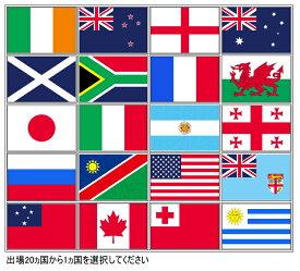 ラグビー強豪国 世界の国旗[70×105cm・高級テトロン製]安心の日本製