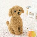 トイプードル アプリコットカラー(手作りキット) 手芸キット ハマナカ 羊毛キット 犬 ドッグ 羊毛フェルト 須佐沙知子