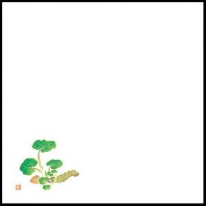 耐油天紙懐敷 わさび 5寸(オールシーズン)(300枚入) 192-9000502(Z127-205)天ぷら敷紙 天婦羅 耐油性 使い捨て おしゃれ 和モダン 和食 飲食店 料亭 旅館 紙 紙製 業務用