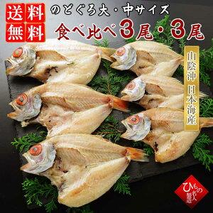 干物(ひもの)セット 詰め合わせ 送料無料のどぐろ(あかむつ)大サイズ・中サイズ食べ比べ-6尾