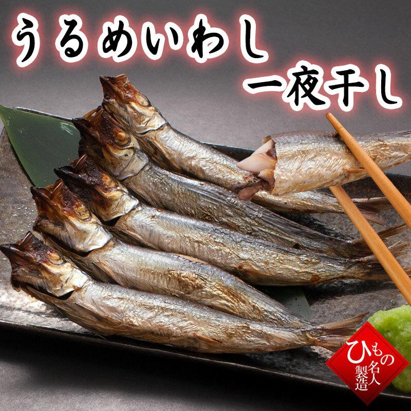うるめいわし(一夜干し)(うぶき) 干物(単品) 山陰沖日本海産