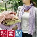 (送料無料)お試し 日本製 UVカット コットン ガーゼマフラー 初回限定価格 / マフラー ストール ガーゼ 紫外線対策 …