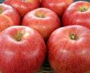 【送料無料】りんご(サンつがる)3kg(特秀品/約9玉入)【但し、沖縄県・一部離島へのお届けは別途送料が300円かかります】
