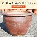 焼き締め植木鉢3-特大 睡蓮鉢 水がめ 水鉢 お値打ち