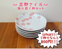 Five pieces of serving plate sets, Shino cherry tree