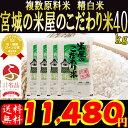 生産地だから出来るこの味。宮城の米屋のこだわり米。ブレンド米のイメージが変わったと高レビュー精白米40kg!(10kg×4袋) 数量限定!なくなり次第終了!お一...