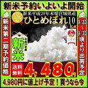 ■新米■29年産 宮城県産 ひとめぼれ 10kg!玄米,5分,7分,精白米(精米時重量約1割減)【米】
