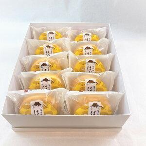 送料無料【富士山はいぷっせ10個】2020 お歳暮 ブッセ 洋菓子 お取り寄せ ギフト 贈り物 贈答 高級和菓子詰合せ 富士山銘菓