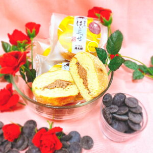 富士山はいぷっせチョコ5個 季節限定 バレンタイン プチギフト 義理チョコ お年賀