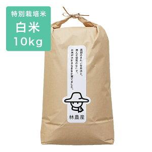 《林農産》【精米】 特別栽培米 コシヒカリ (10kg) 富山のエコファーマー 林農産 令和2年度 富山県産