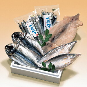 【袋あり(有料)】<寿々屋> 日本海産一夜干詰合せ(A)[冷凍]【お歳暮特集 贈り物 北陸 富山 お土産 ひもの 干物 海鮮 シーフード 魚介 御挨拶 ギフト 贈答】