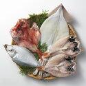 <味の十字屋>一夜干詰合せ[冷凍]【贈り物北陸富山石川県お土産干物魚介御挨拶ギフト贈答】