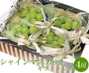 【送料無料】シャインマスカット ギフトボックスセット 4房 【 ぶどう ブドウ 葡萄 マスカット セット 家庭用 贈り物 贈答 お祝い お返し フルーツ お取り寄せ うまい 果物 】