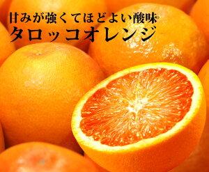 【国産】 タロッコオレンジ【14個入】【 大分県 14個 国産 大分県産  ブラッド オレンジ 柑橘 家庭用 贈り物 贈答 お祝い お返し ギフト プレゼント】