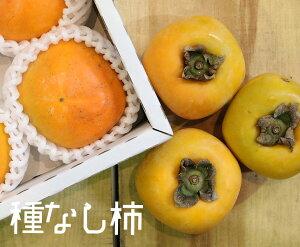 【9〜11個】奈良県産 ハウス柿【柿 家庭用 贈り物 贈答 お祝い お返し お歳暮】