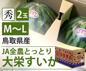 【送料無料】鳥取県産 大栄すいか【M〜L】【鳥取県産 JA全農とっとり 大玉 スイカ すいか 家庭用 贈り物 贈答 お祝い お中元 お返し 西瓜 大きい 秀 フルーツ お取り寄せ うまい 果物】