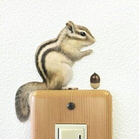 リス カラーウォールステッカー【Animal LIFE シマリス(横向き)】りす 雑貨 インテリア 壁 シール どうぶつ 動物 ペット 栗鼠