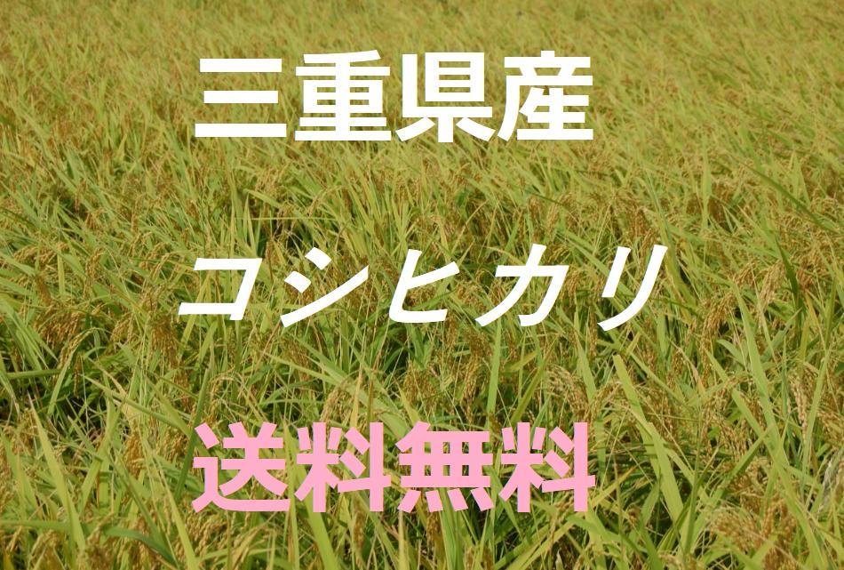 新米【平成30年産】 こしひかり 10kg 送料無料