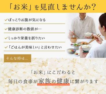 うまみと栄養を両立したお米金芽米・無洗米ベストセレクト10kg【5kg2袋】【29年産】【送料無料】【ギフトにもおすすめ】【smtb-T】【fd0214】【0215_sa_food】
