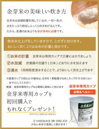 金芽米ベストセレクト10kg【5kg×2袋・送料込】【30年産】※無洗米・免疫ビタミンLPS(リポポリサッカライド)が豊富(きんめまい・お米)【ギフトおすすめ】
