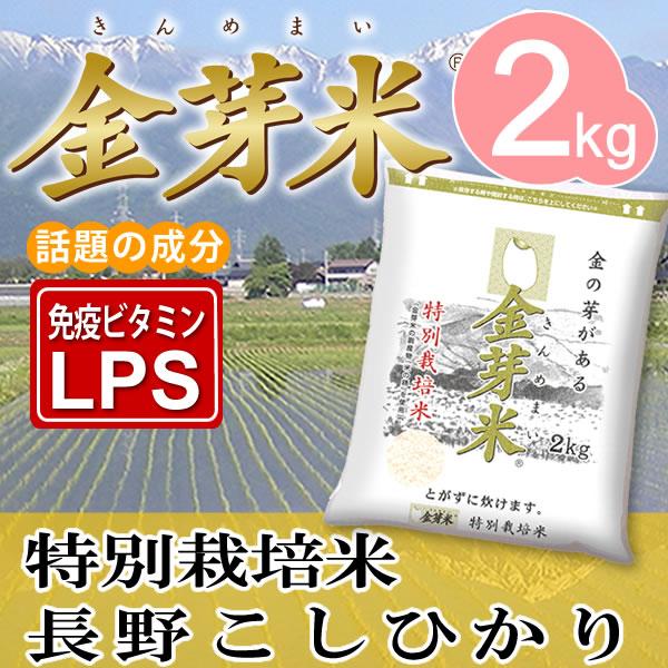 【29年産】特別栽培米2kg【送料込】※無洗米・LPS(リポポリサッカライド)が豊富で免疫力アップ(きんめまい・お米)