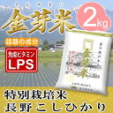 金芽米 特別栽培米【長野こしひかり】2kg【送料込み】【とがずに炊ける無洗米】【28年産】【LPS リポポリサッカライド 豊富 免疫力】きんめまい