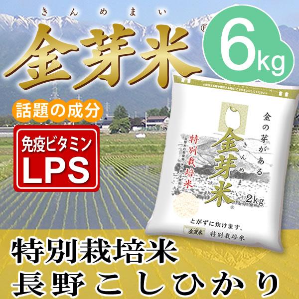 【29年産】金芽米 特別栽培米6kg【2kg×3袋・送料込】※無洗米・LPS(リポポリサッカライド)が豊富で免疫力アップ(きんめまい・お米)