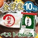 【29年産・新米】金芽米 ベストセレクト10kg【5kg×2袋・送料込】※無洗米・LPS(リポポリサッカライド)が豊富で免…