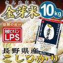 【新米】金芽米 長野こしひかり10kg【5kg×2袋・送料込】【30年産】※無洗米・免疫ビタミンLPS(リポポリサッカライ…