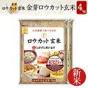 【新米】白米感覚で食べる玄米金芽ロウカット玄米4kg【2kg×2袋・送料込】【令和元年産】※BG無洗米・免疫ビタミンと…