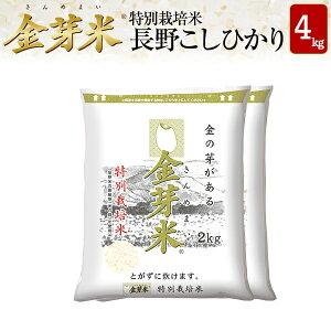 【新米】金芽米 特別栽培米 長野県産コシヒカリ4kg【2kg×2袋・送料込】【令和3年産】※洗わずに炊ける BG無洗米 きんめまい 健康志向 お米の栄養が豊富