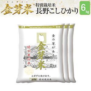 【新米】金芽米 特別栽培米 長野県産コシヒカリ6kg【2kg×3袋・送料込】【令和3年産】※洗わずに炊ける BG無洗米 きんめまい 健康志向 お米の栄養が豊富