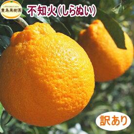【送料無料】【訳あり】【B】不知火(デコポン) 5kg