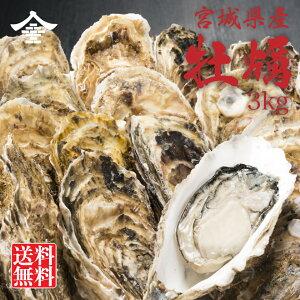 宮城県・岩手県産 牡蠣 3kg 送料無料 加熱用 殻付き 24から30個入り 蒸し焼き 焼き牡蠣 炊き込みご飯 アヒージョ BBQ お取り寄せ グルメ おとりよせ