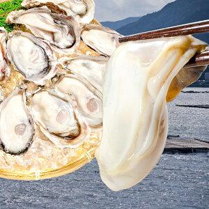送料無料 生牡蠣 1kg 生食用カキ 冷凍時1kg 解凍後850g 冷凍むき身牡蠣 生食用 新製法で冷凍なのに生食可能な牡蠣で濃厚な風味【冷凍 生ガキ かき カキ 牡蛎 牡蠣鍋 カキフライ 牡蠣フライ ギ