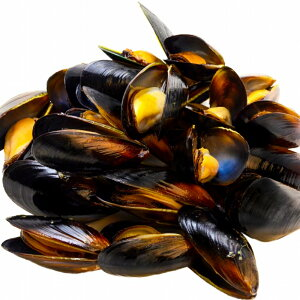 ムール貝1kg ボイル 殻つきムール貝 500g×2パック 解凍後そのまま食べられます。【輸入食材 豊洲市場 鍋 パスタ パエリア ブイヤベース 香草焼き ワイン蒸し イタリアン スパニッシュ ムール
