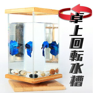 水槽 アクアリウム 金魚鉢 卓上 AQUARIUM すいそう おしゃれ 小型水族館 かわいい オブジェ ガラス 四角 長方形 金魚 メダカ 熱帯魚 回転可能 デスク コンパクト 天然竹 デスク 飼育 ガラス水槽