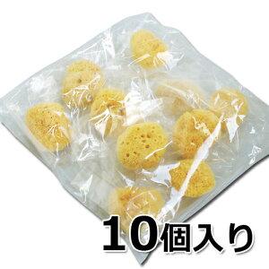 天然海綿シルク サイズ7(約5〜7cm) 大粒タイプ お買得10個入り 柔らかくて肌にも優しい│洗顔用 洗体用 5000円以上送料無料