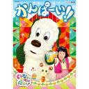 【DVD】NHK-DVD いないいないばあっ!かんぱーい!!
