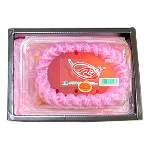 宮崎産 マンゴー 化粧箱1個入 まんごう マンゴー 宮崎マンゴー