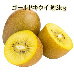 ゴールドキウイ18玉〜27玉 サンゴールド ゼスプリ ゴールド きうい キューイ ごうるどきうい キウイフルーツ