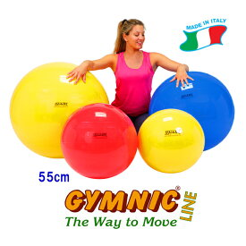 【あす楽★今ならダブルアクションポンプをプレゼント】ギムニクボール55 (レッド)直径55cm 適用身長145cm〜159cm ギムニク バランスボール