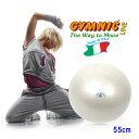 【あす楽◆今ならダブルアクションポンプをプレゼント】ギムニク・フィットボール55(パール)直径55cm 適用身長145cm…