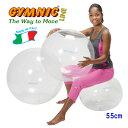 【あす楽◆今ならダブルアクションポンプをプレゼント】ギムニク・オプティボール55(クリア)直径55cm 適用身長145cm…