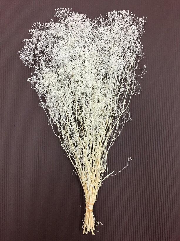 【プリザーブド】大地農園/ソフトミニカスミ草 22g 白/0001-0-010