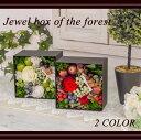 【送料無料】プリザーブドフラワー ボックスアレンジ 森の宝石箱 誕生日 インテリア お祝い 新築祝い