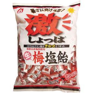 【熱中飴 熱中症対策】梅塩飴 1kg 和歌山産梅肉使用(HO-163)熱中飴/熱中症対策用