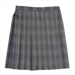 ◆【Teens Ever -17SS スカート(グレー/ネイビー) L】特殊プレス加工でプリーツがとれにくいスカートに新柄登場。3段階アジャスターやポケットがついた機能的なデザイン。【女子高生制服/ブレ